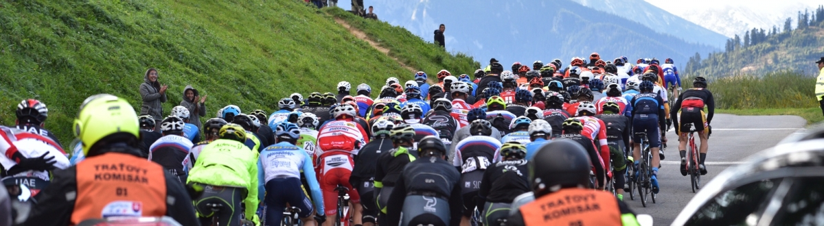Stage 2 Gallery 2019